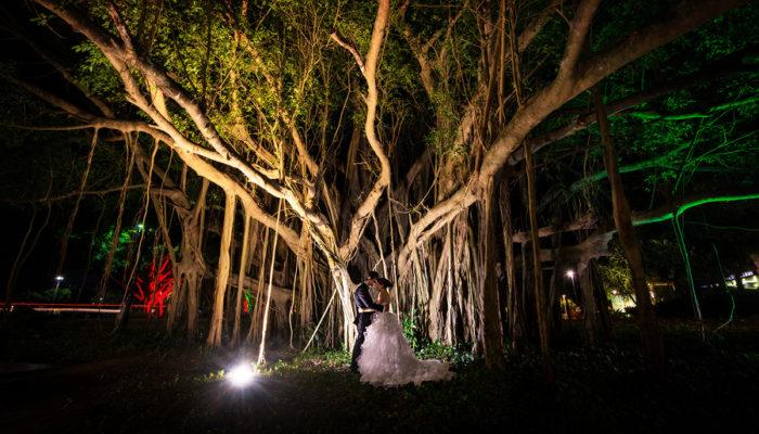 Cairns Wedding Photographer Shangri -La Cairns