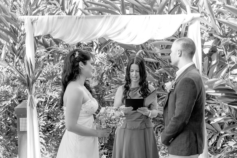 cairns wedding photgoraphy