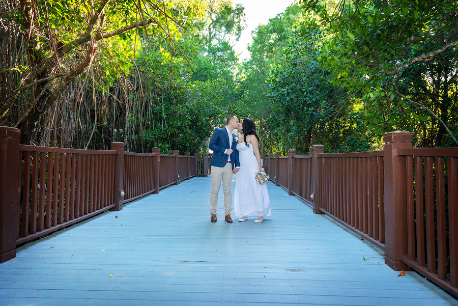 palm cove wedding photos
