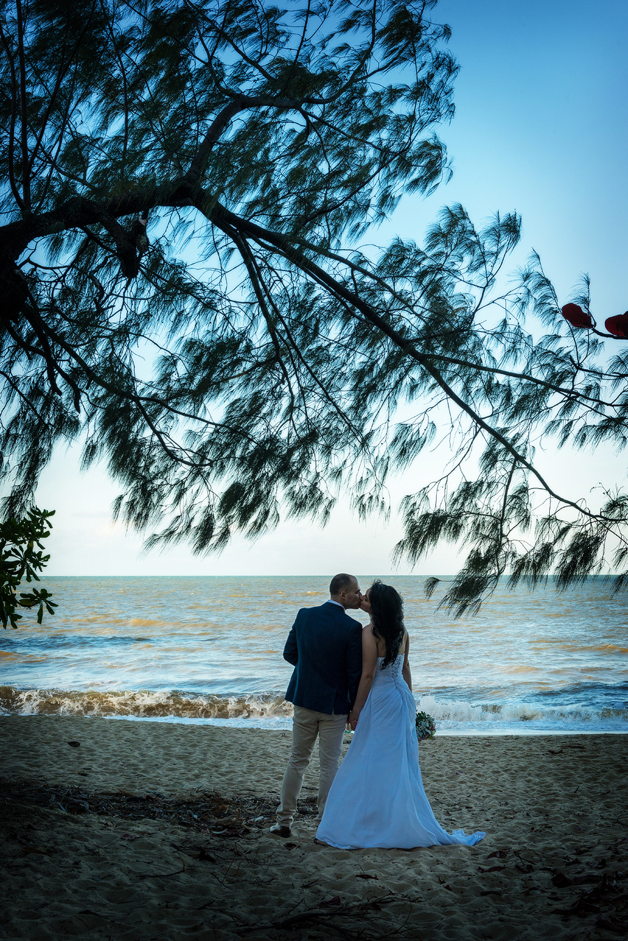 palm cove photographer