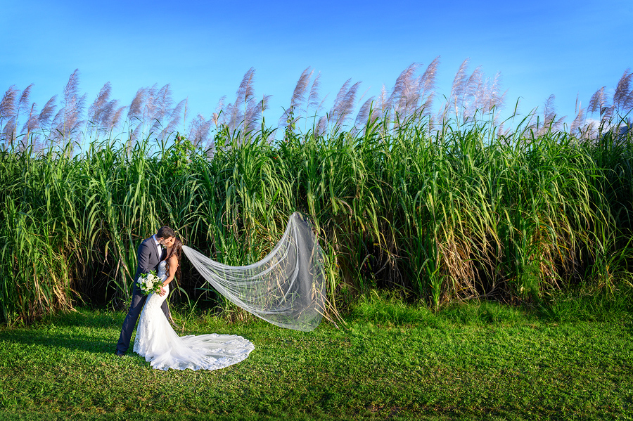Cairns rainforest wedding photos