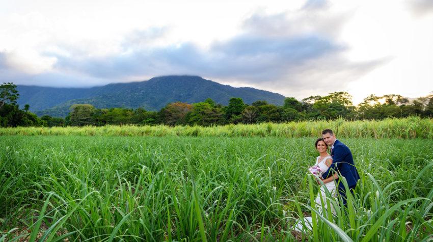 cairns wedding cane fields