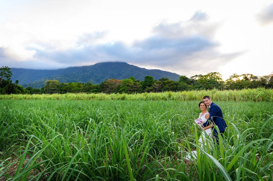 cairns wedding cane fields