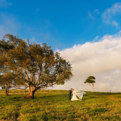 Malanda dairy wedding photo